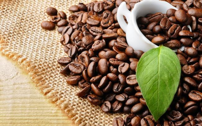 Thưởng thức cà phê hạt rang cũng là một nghệ thuật